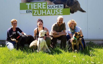 """Sendung """"Tiere suchen ein Zuhause"""" im WDR am 13.05.2018"""
