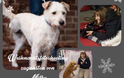 Lenas Einsatz für Hundehilfe Piroschka